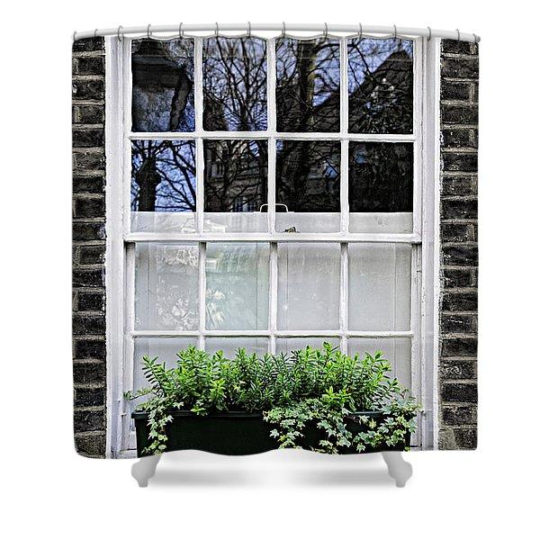 Window In London Shower Curtain by Elena Elisseeva