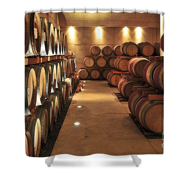 Wine barrels Shower Curtain by Elena Elisseeva