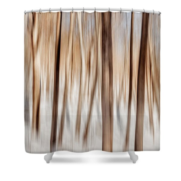 Winter Abstract Shower Curtain by Bill  Wakeley