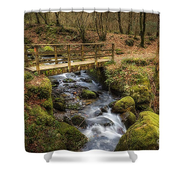Winter Footbridge Shower Curtain by Adrian Evans