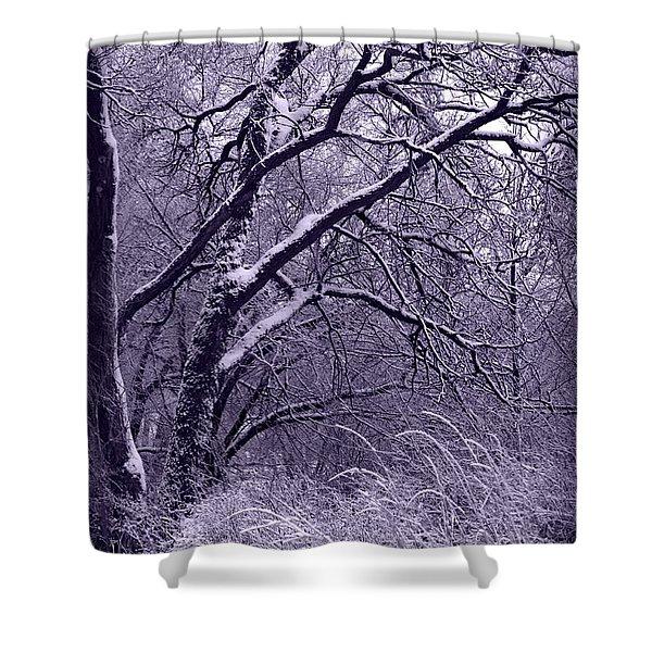 Winter in Purple Shower Curtain by Carol Groenen