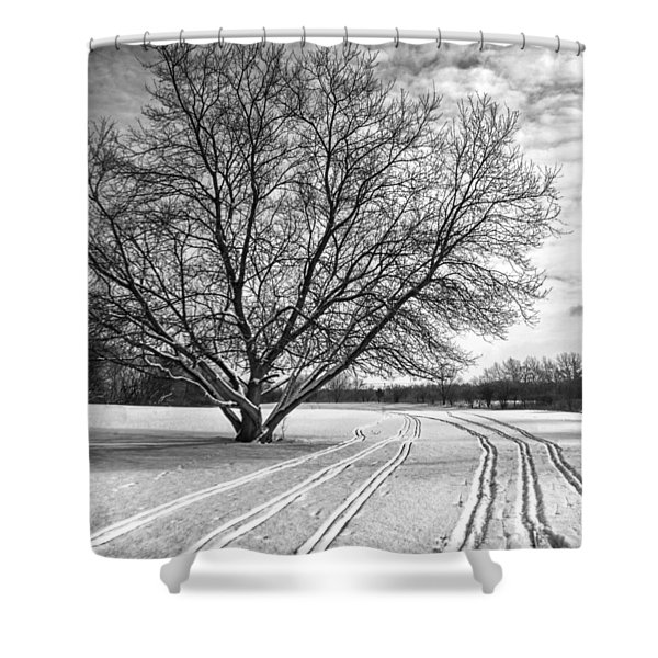 Winter Lines Shower Curtain by Lauri Novak