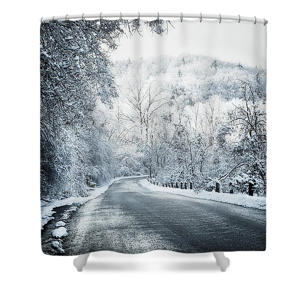 Winter Road In Forest Shower Curtain by Elena Elisseeva