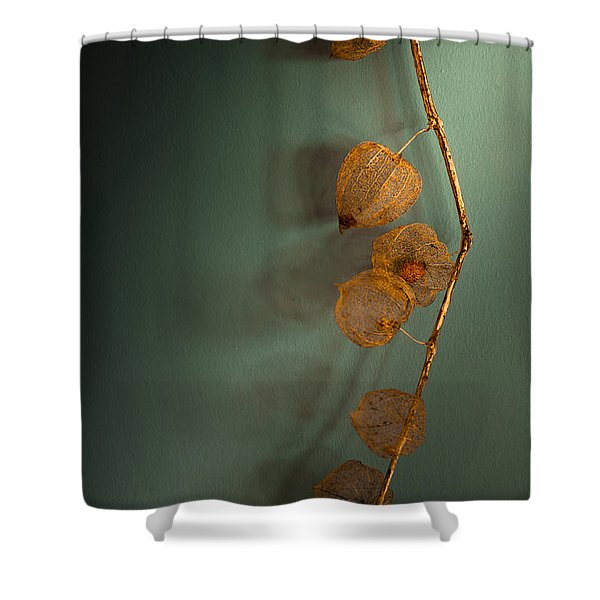 Winter Treasures Shower Curtain by Jan Bickerton