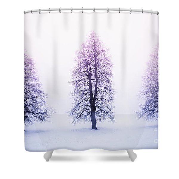 Winter trees in fog at sunrise Shower Curtain by Elena Elisseeva