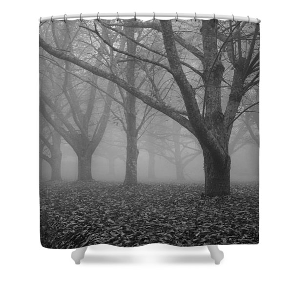 Winter trees in the mist Shower Curtain by Nomad Art And  Design