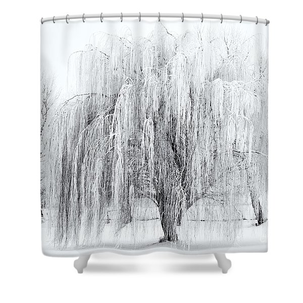 Winter Willow Shower Curtain by Mike  Dawson