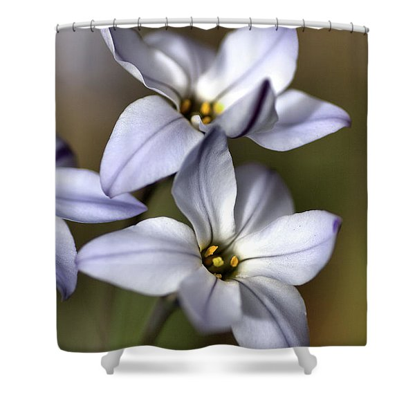 With Company Shower Curtain by Joy Watson