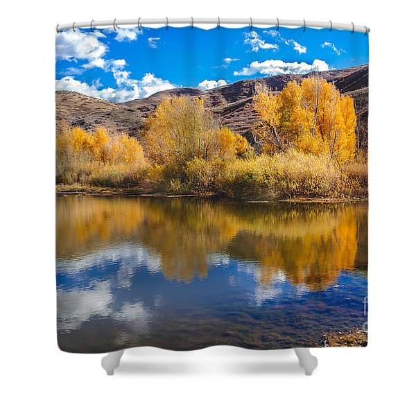 Yellow Fall Reflections Shower Curtain by Robert Bales