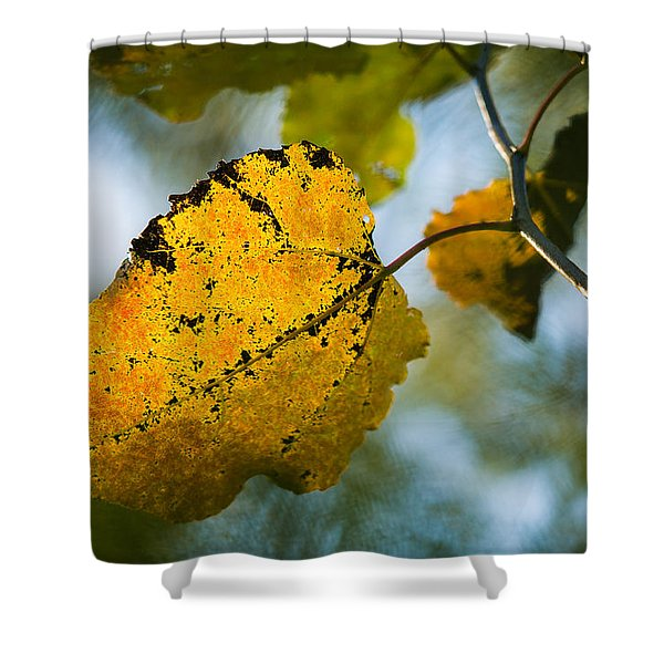 Yellow Light - Featured 3 Shower Curtain by Alexander Senin