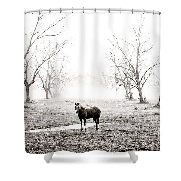 Your Morning Joe Shower Curtain by Scott Pellegrin