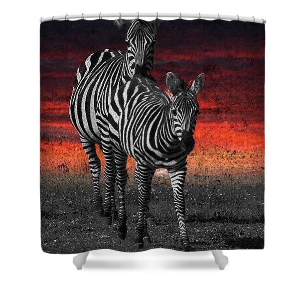 Zebra Train - Featured In Nature Photography - Wildlife And A Place For All Groups Shower Curtain by EricaMaxine  Price