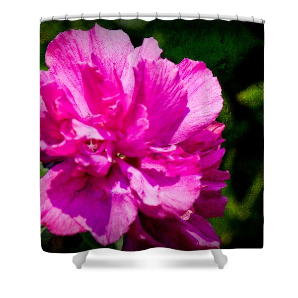 Althea Blossom Shower Curtain by Barry Jones