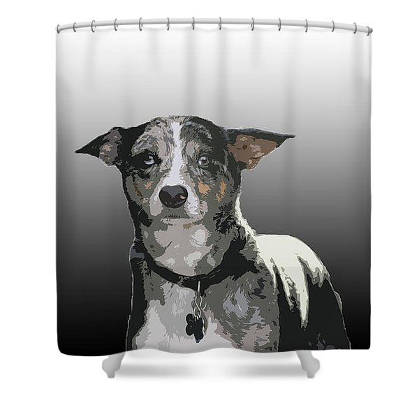 Australian Cattle Dog Sheltie Mix Shower Curtain by One Rude Dawg Orcutt