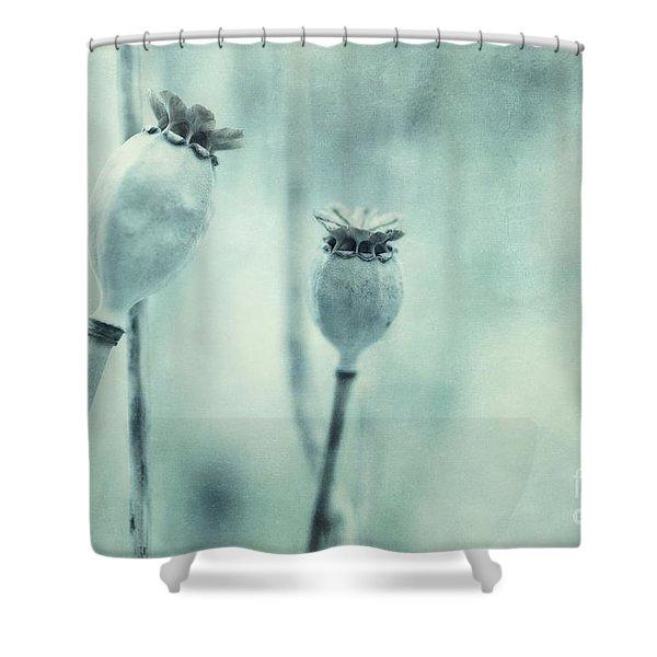 capsule series Shower Curtain by Priska Wettstein
