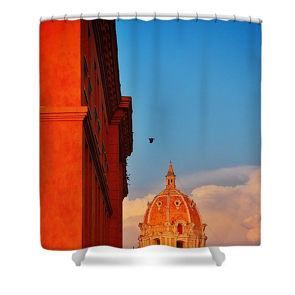Corona Shower Curtain by Skip Hunt