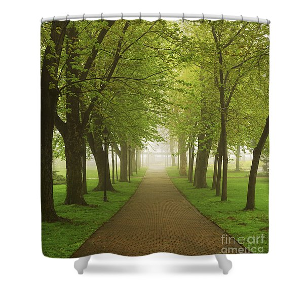 Foggy park Shower Curtain by Elena Elisseeva