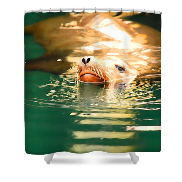 Hello Shower Curtain by Cheryl Young