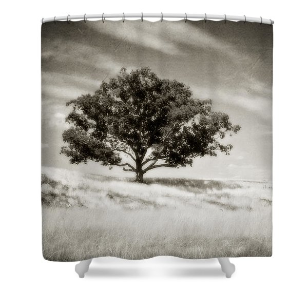 Hill Top Beauty Shower Curtain by Scott Pellegrin