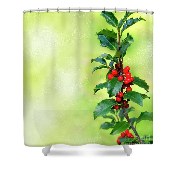 Holly Branch Shower Curtain by Carlos Caetano