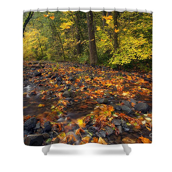 Scattered About Shower Curtain by Mike  Dawson