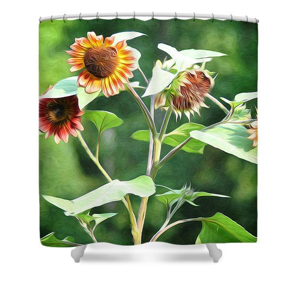 Sunflower Power Shower Curtain by Bill Cannon