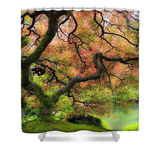 Tree of Beauty Shower Curtain by Steve McKinzie