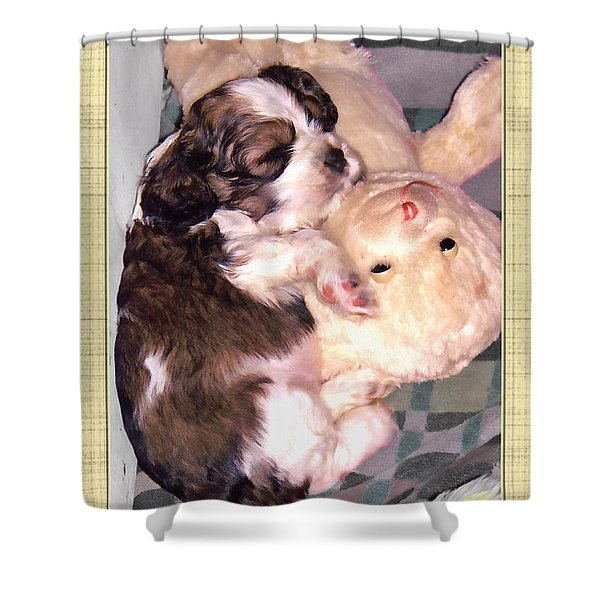 Two Stuffed Animals Shower Curtain by Debbie Portwood