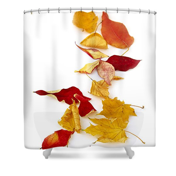 Autumn Leaves Shower Curtain by Elena Elisseeva
