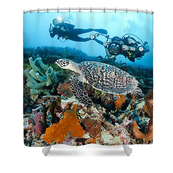 Underwater Photography Shower Curtain by Dave Fleetham - Printscapes