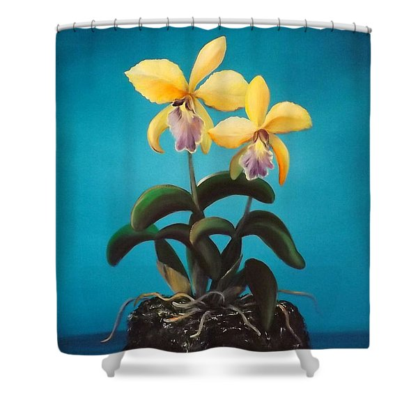 Shower Curtains - Orchids Shower Curtain by Gina De Gorna