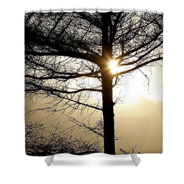 A Golden Day Shower Curtain by Marie Jamieson