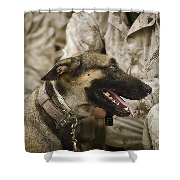 A Military Working Dog Sits At The Feet Shower Curtain by Stocktrek Images