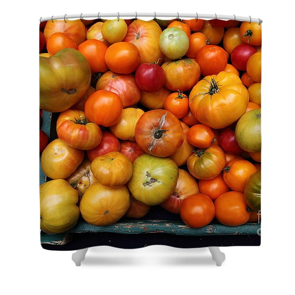 A Variety of Fresh Tomatoes - 5D17812 Shower Curtain by Wingsdomain Art and Photography