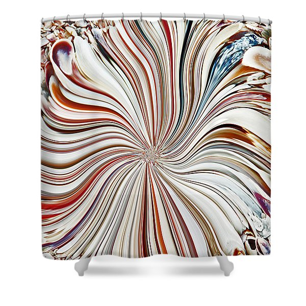 Abstract Seashells Shower Curtain by Aimee L Maher Photography and Art