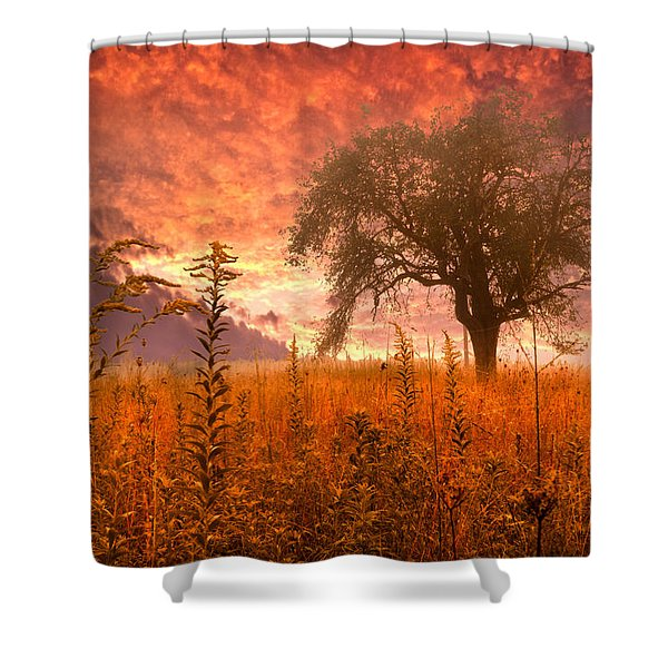 Aflame Shower Curtain by Debra and Dave Vanderlaan