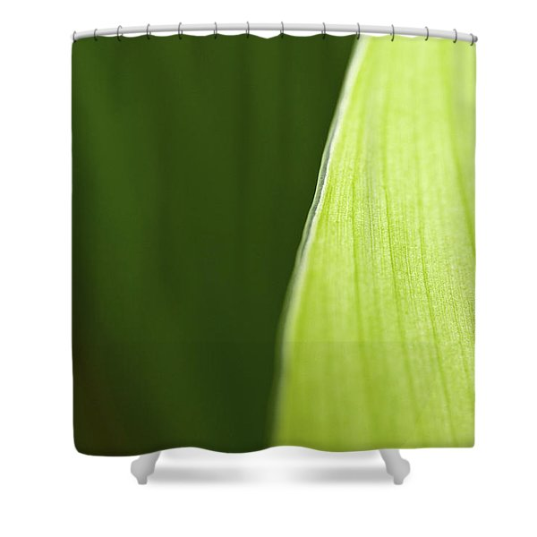Along the Edge Shower Curtain by Rich Franco