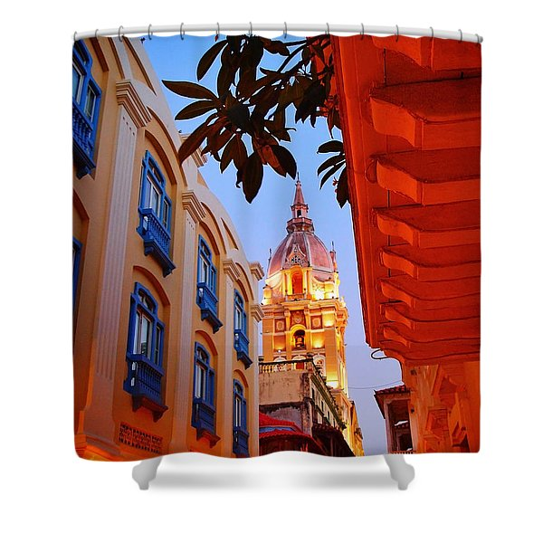 Along the Watchtower Shower Curtain by Skip Hunt
