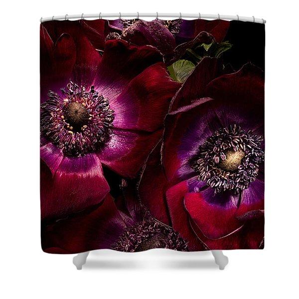 Anemones Shower Curtain by Ann Garrett