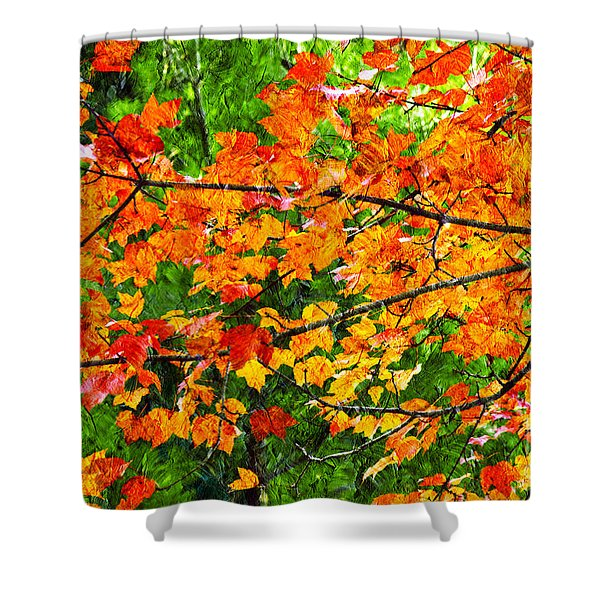 Autumn Abstract Painterly Shower Curtain by Andee Design