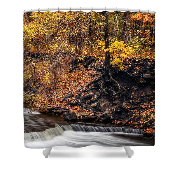 Autumn Flow Shower Curtain by Mark Papke
