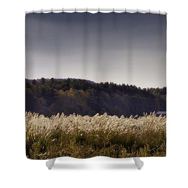 Autumn Grasses - North Carolina Autumn Scene Shower Curtain by Rob Travis
