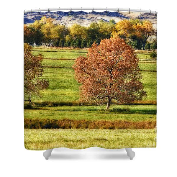 Autumn Landscape Dream Shower Curtain by James BO  Insogna
