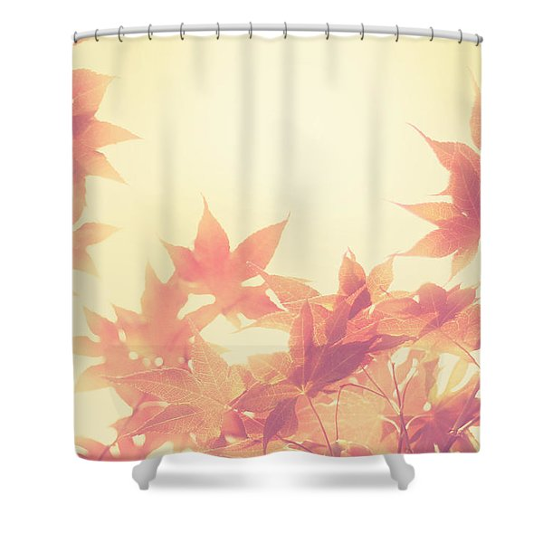 Autumn Sky Shower Curtain by Amy Tyler