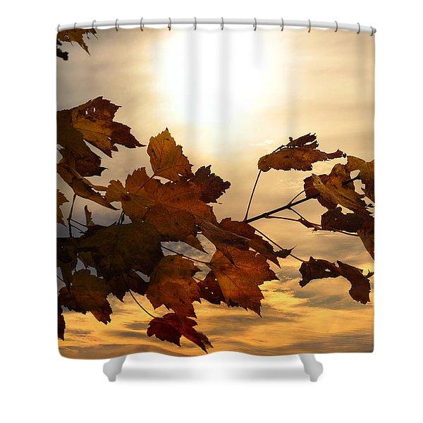 Autumn Splendor Shower Curtain by Bill Cannon