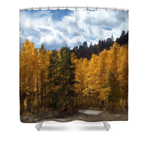 Autumn Splendor Shower Curtain by Carol Cavalaris