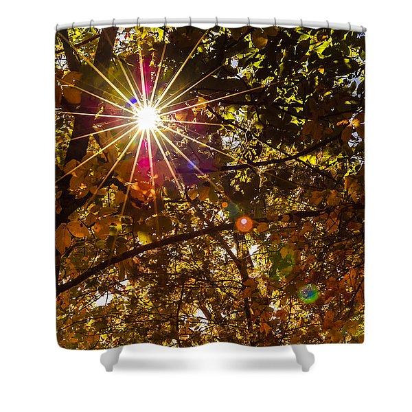 Autumn Sunburst Shower Curtain by Carolyn Marshall