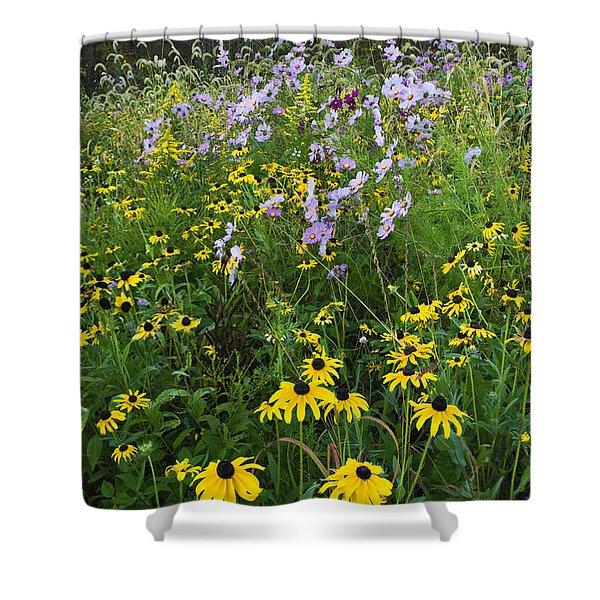 Autumn Wildflowers - D007762 Shower Curtain by Daniel Dempster