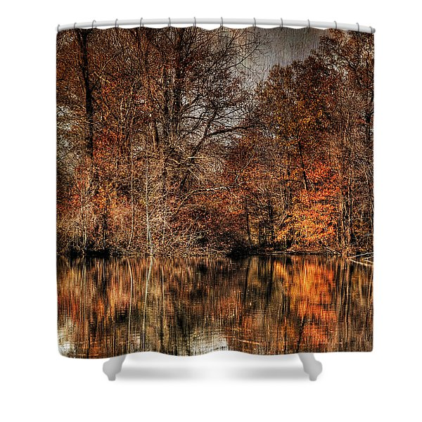 Autumn's End Shower Curtain by Paul Ward