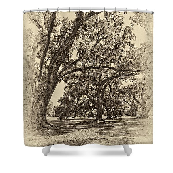 Back to the Future antique sepia Shower Curtain by Steve Harrington